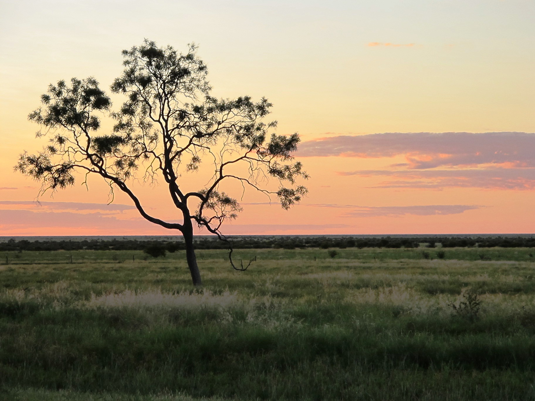 Sunset in the Lake Eyre Basin.