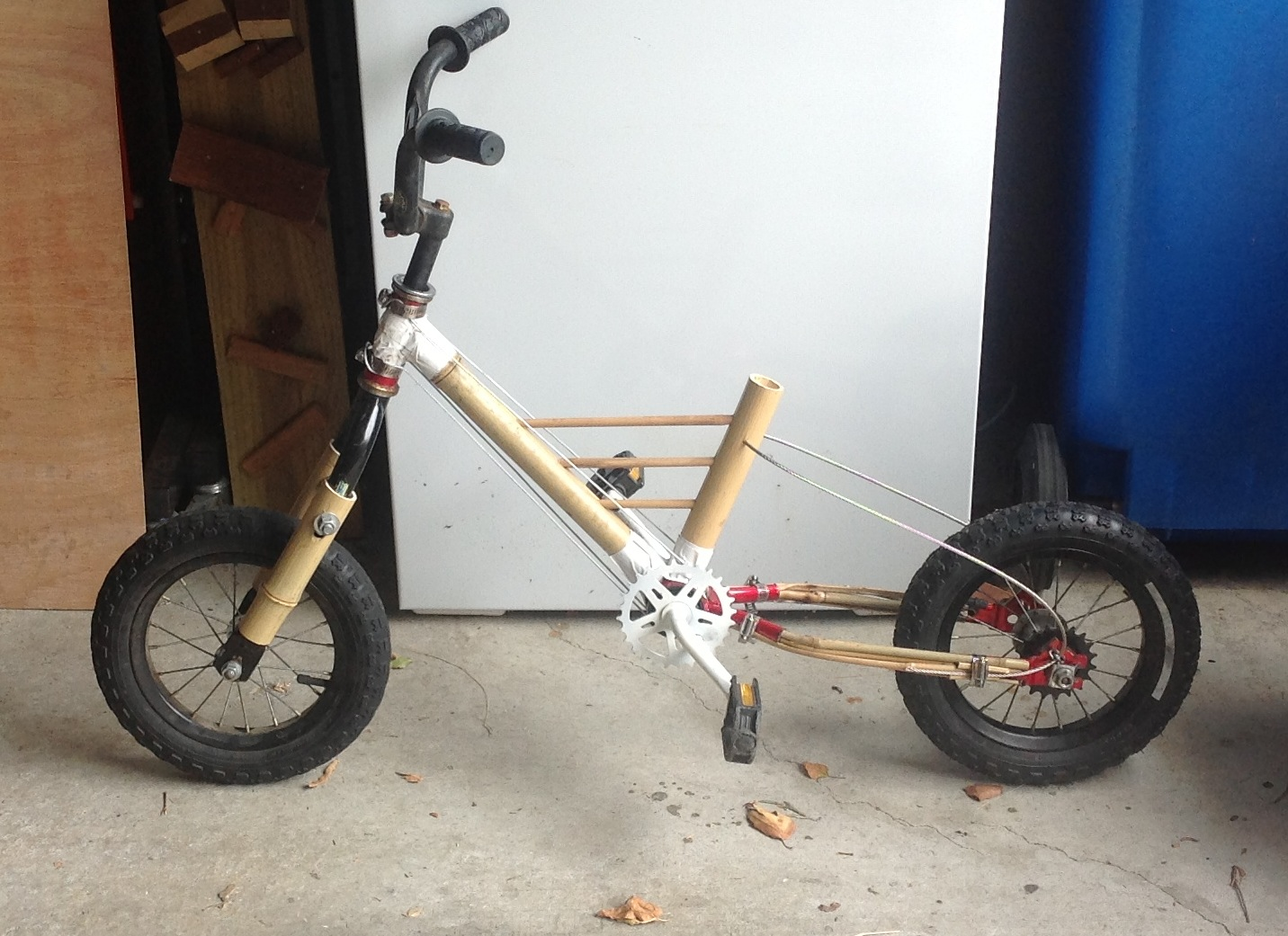 An organic bamboo bike