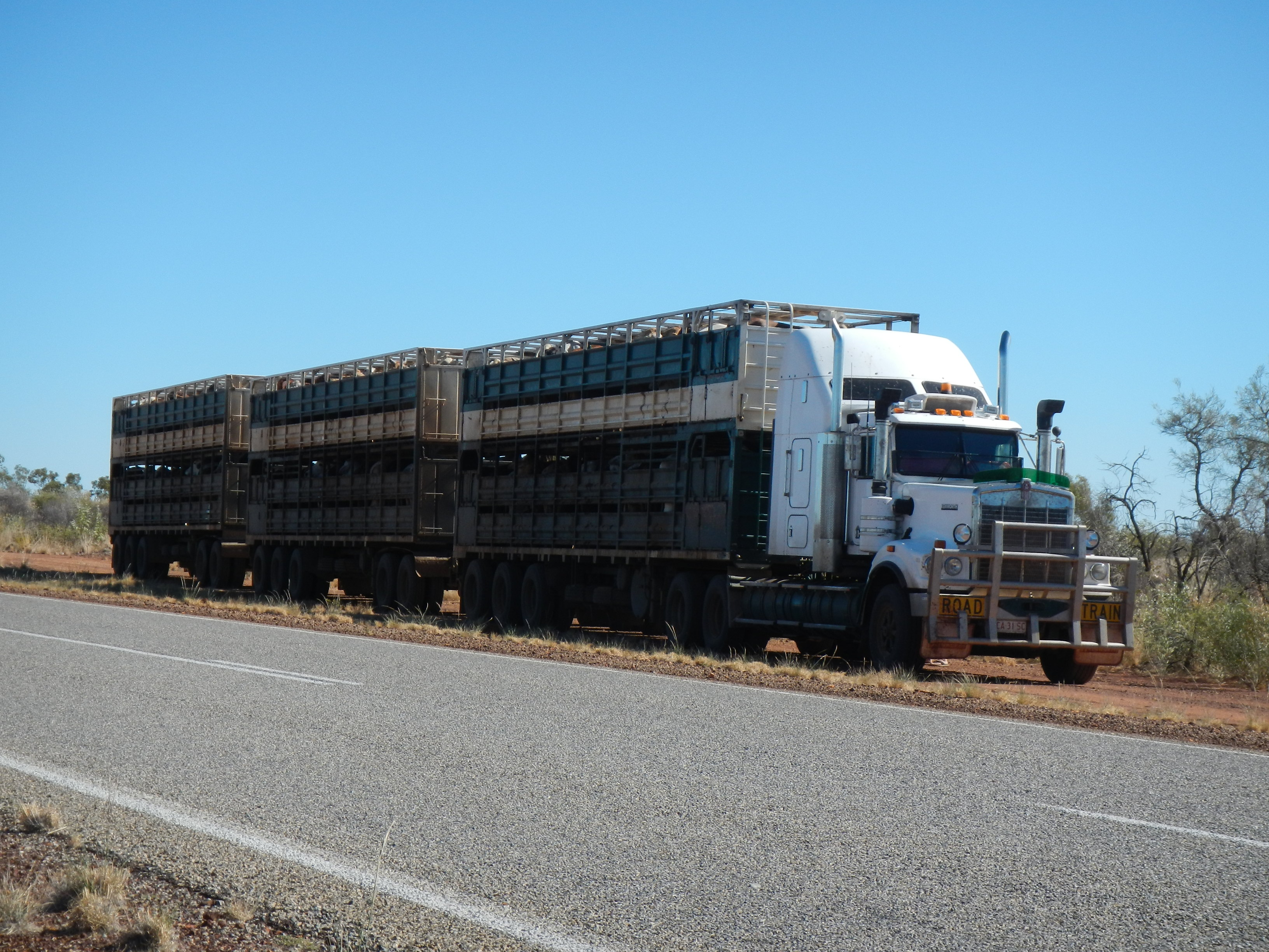 Cattle Truck in the Northern Territory