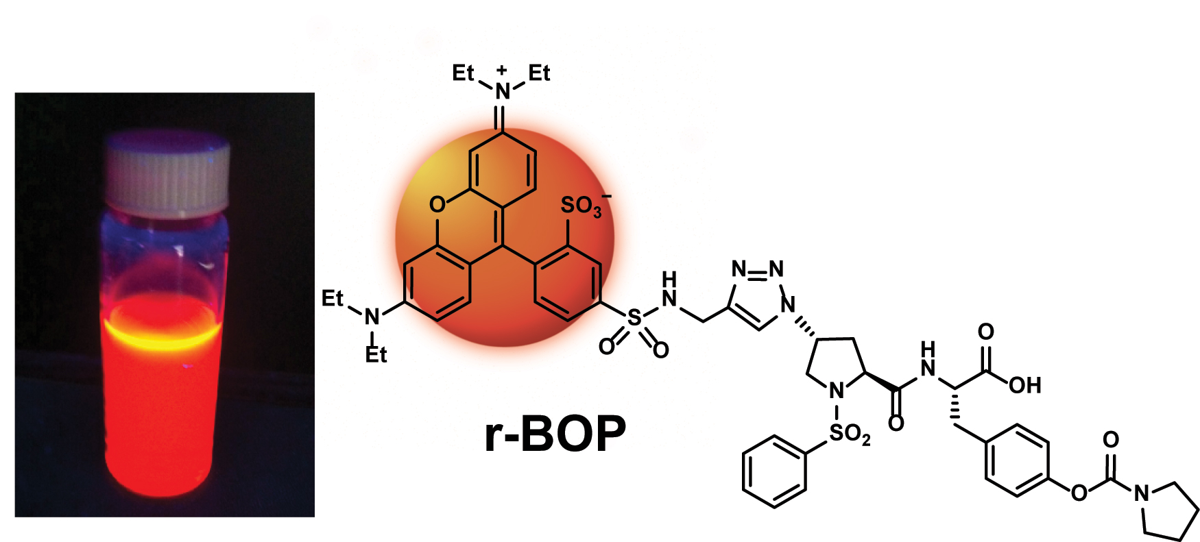 Molecular structure for BOP