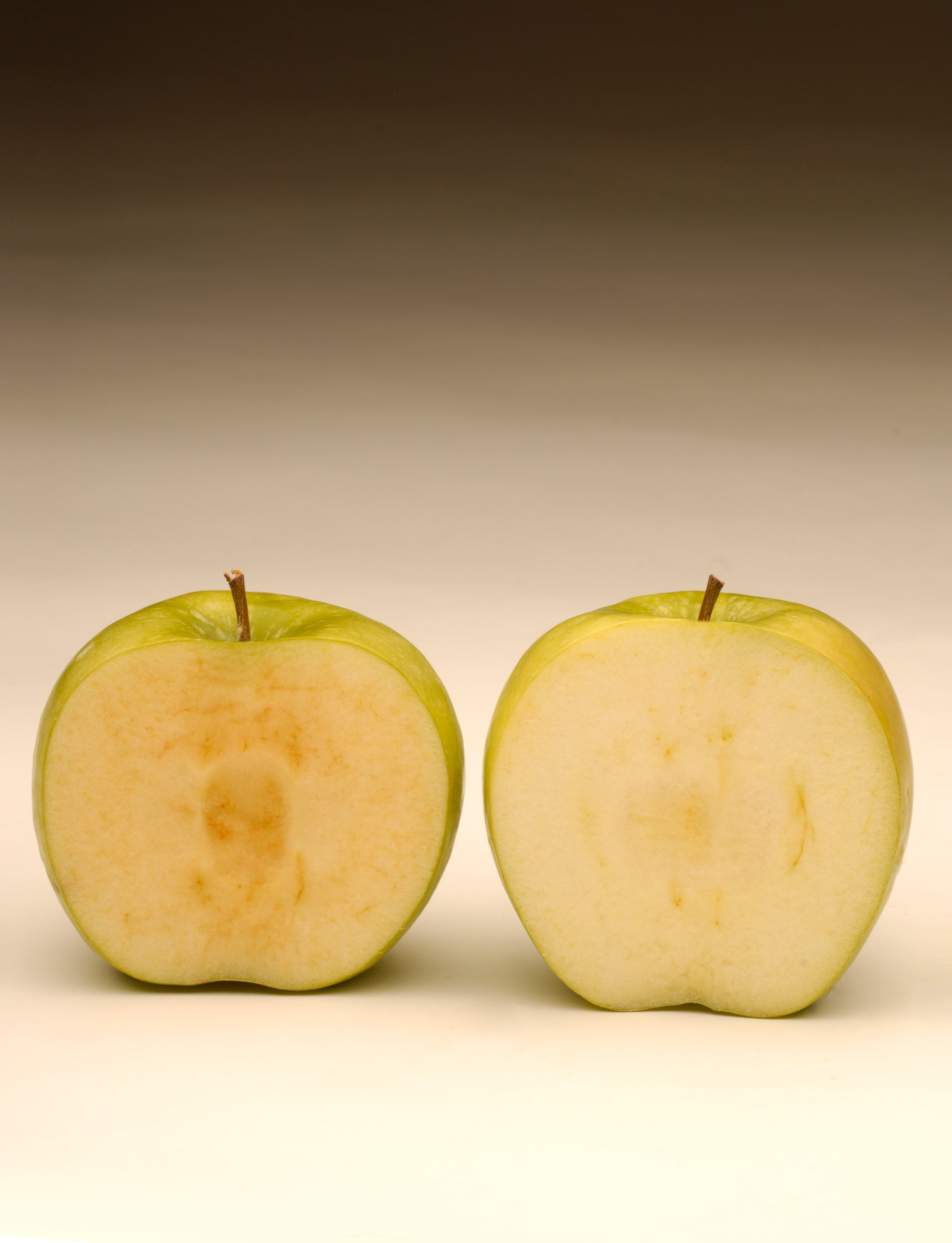 Two sliced apples, one showing signs of browing and the other not
