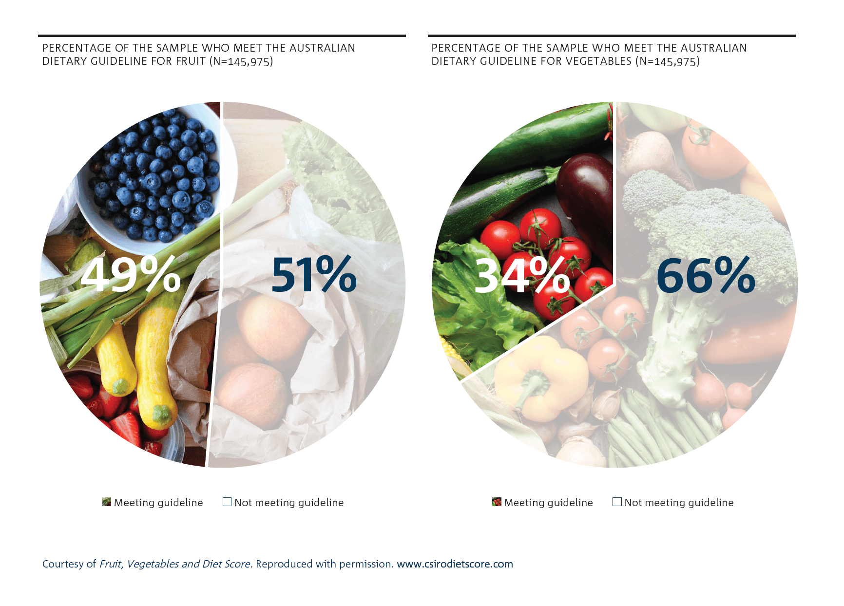 Shaded pie chart showing a breakdown of the percentage of participants who meet the Australian guidelines for fruit (49 per cent met; 51 per cent not met) and vegetables (34 per cent met; 66 per cent not met).