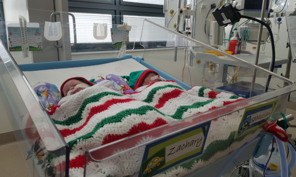 two premature babies in a crib in hospital