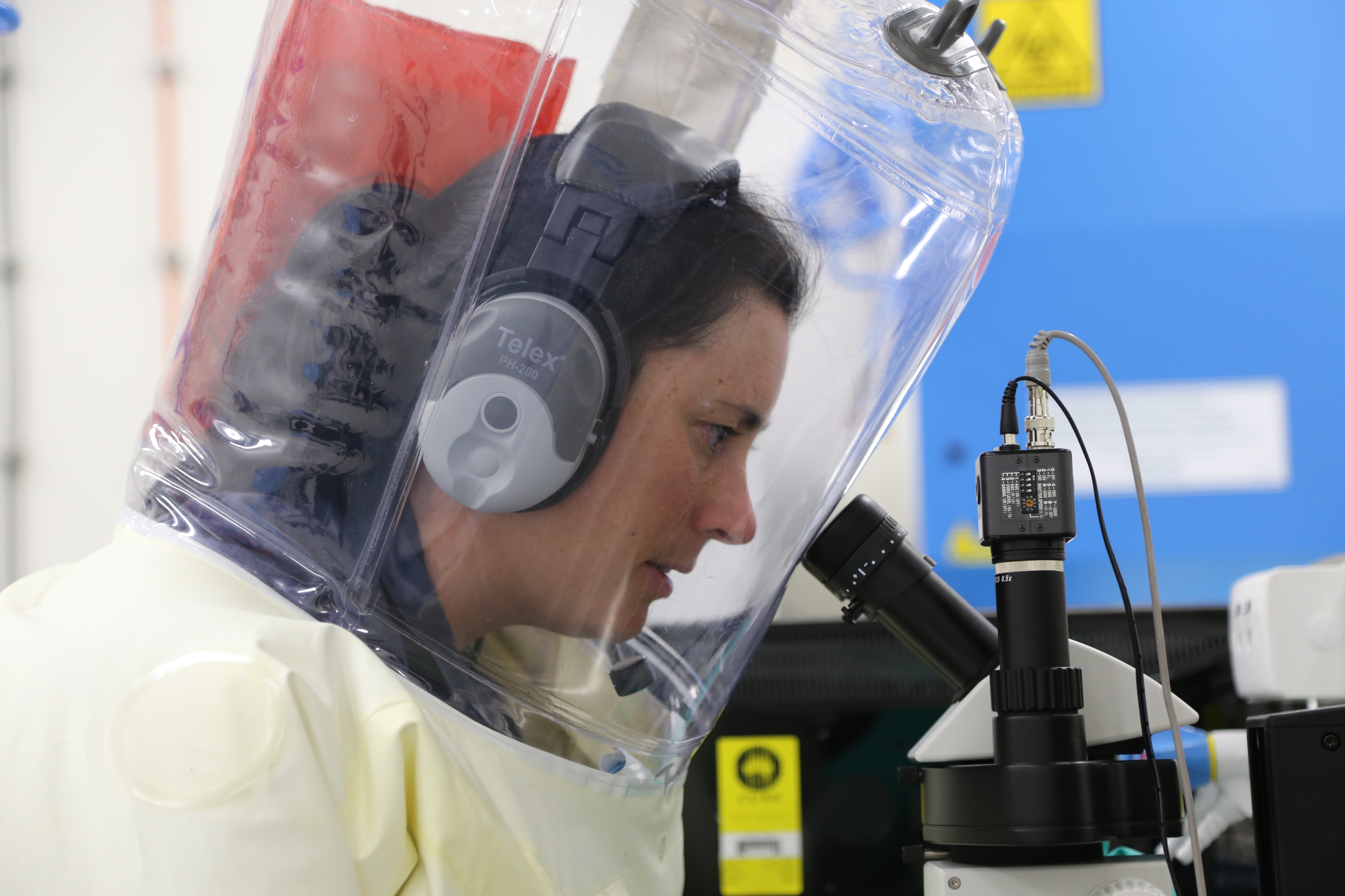 CSIRO scientists perform biosecurity tests at the Australian Animal Health Laboratory