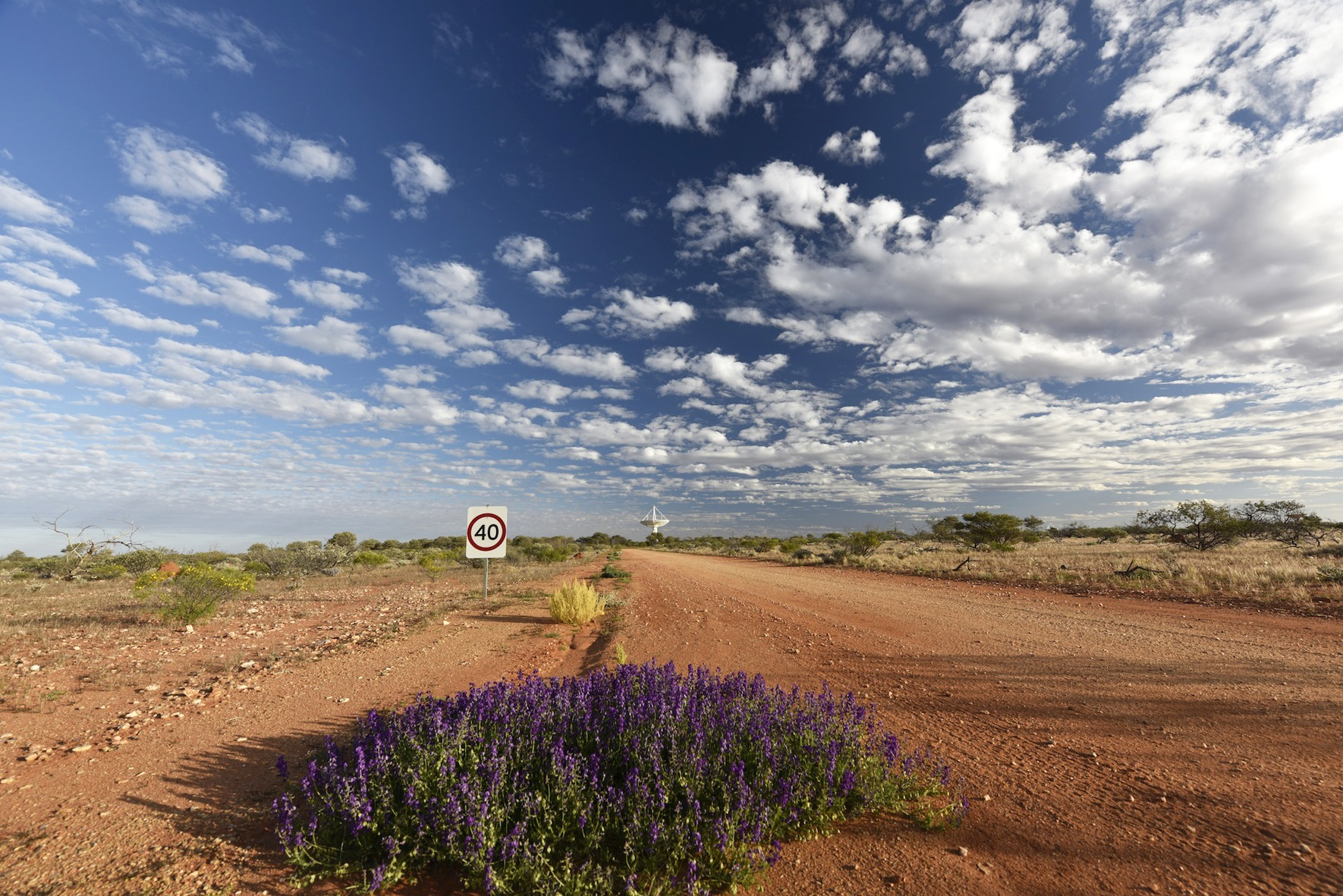 Dirt road leading up to one of the radio telescopes in the Square Kilometre Array in the distance.