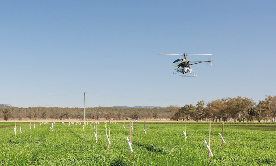 A drone flies over a crop