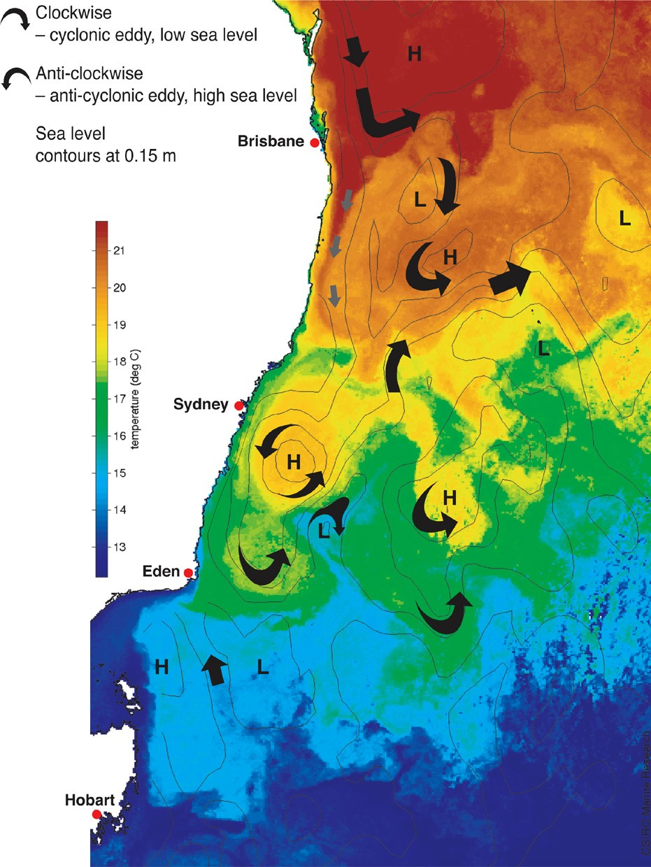 Bluelink ocean forecast of currents off eastern Australia