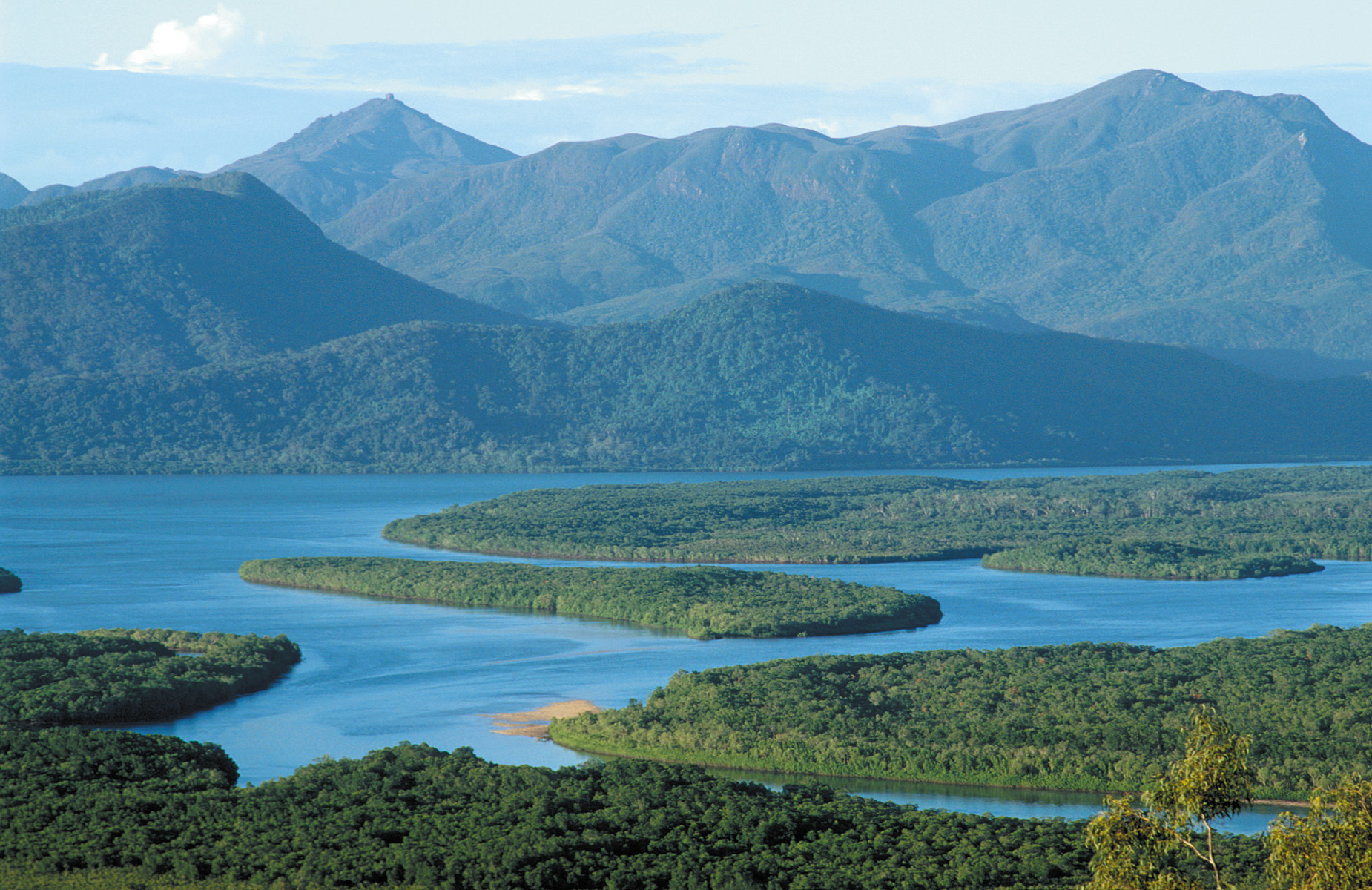 View across forest and water to Hinchinbrook Island