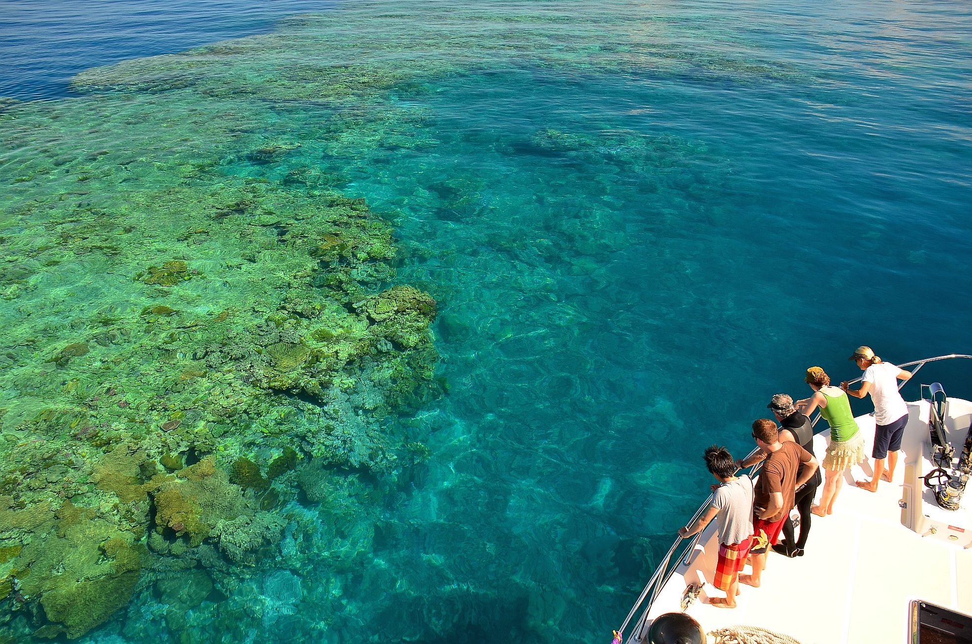 People looking at the Great Barrier Reef from a boat.