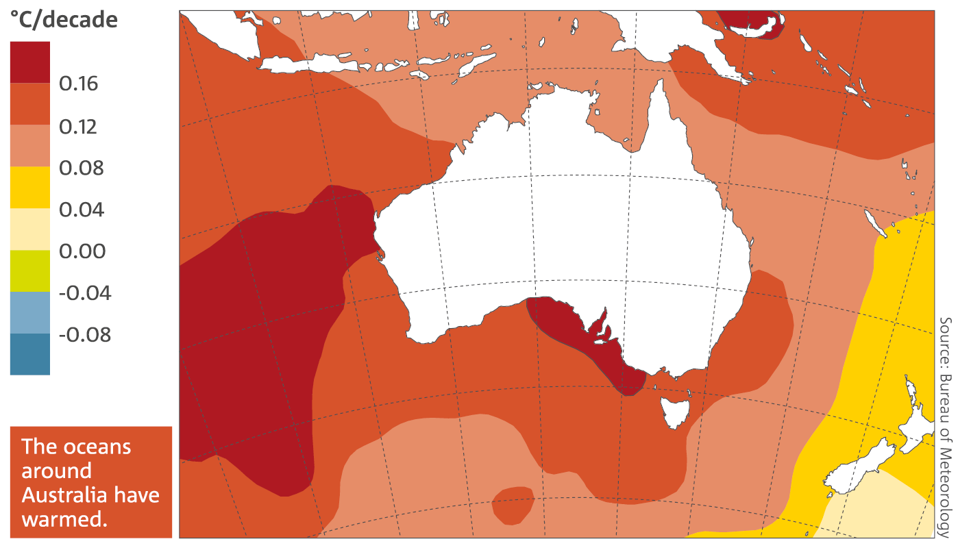 Map: Trends in sea surface temperature in the Australian region from 1950 to 2015. The oceans around Australia have warmed.