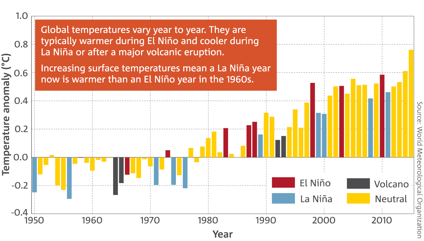 Bar chart: Global surface temperature anomalies of the Earth (land and ocean) for 1950–2015. Global temperatures vary year to year. They are typically warmer during El Niño and cooler during La Niña or after a major volcanic eruption.   Increasing surface temperatures mean a La Niña year now is warmer than an El Niño year in the 1960s.