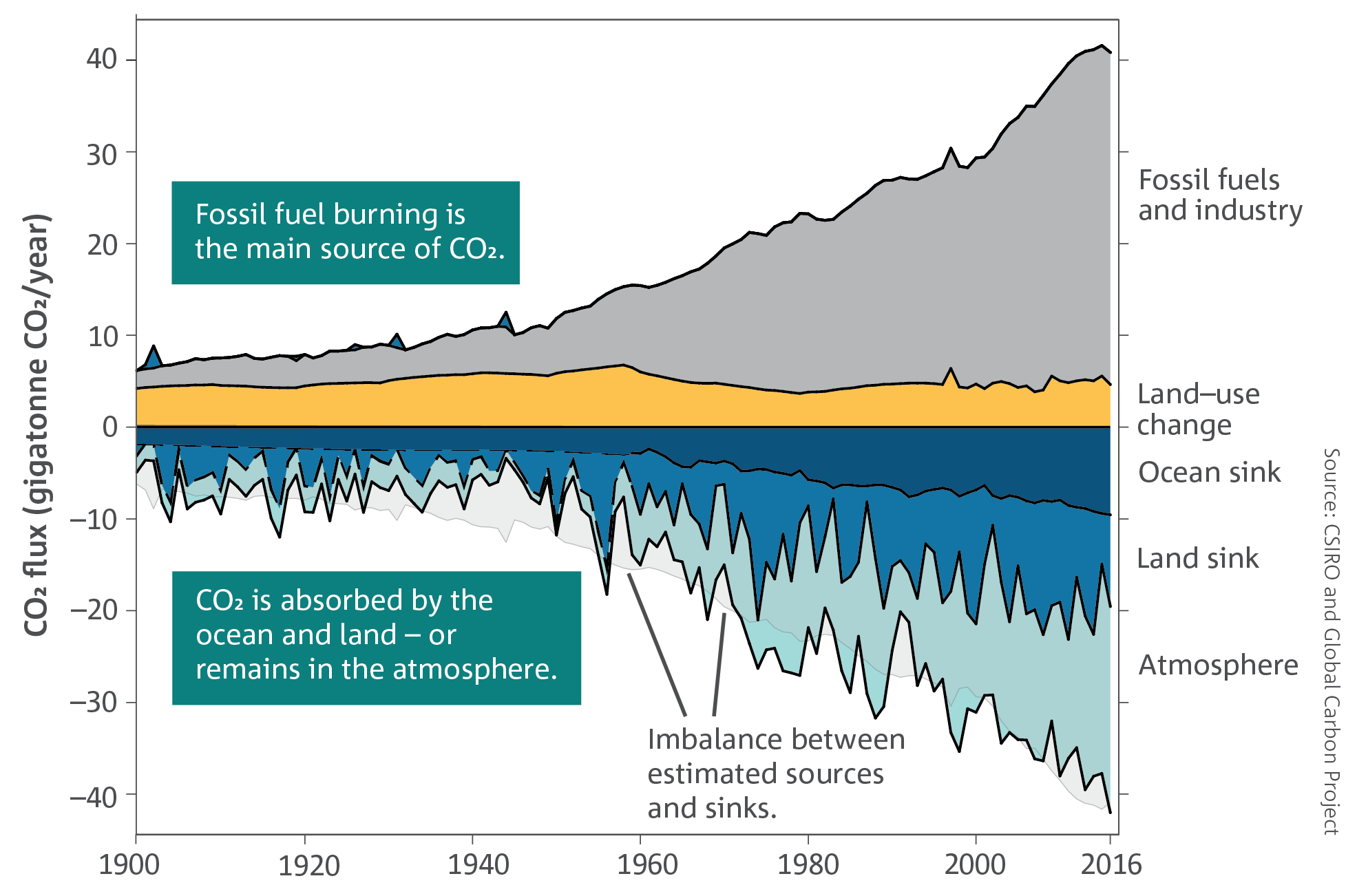 The CO2 fluxes in the global carbon budget over the period 1900–2016.