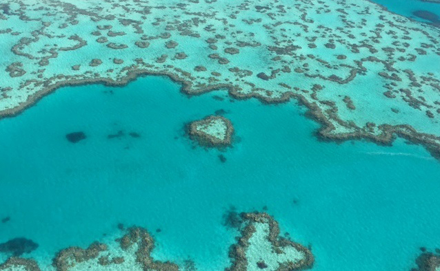 Aerial view of a section of the Great Barrier Reef, showing a distictive shaped coral reef known as Heart Reef.
