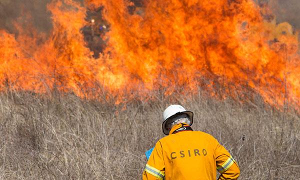 CSIRO to help establish new disaster research centre